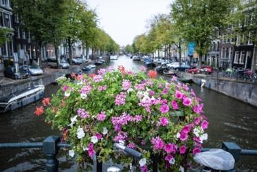 Blumenstrows
